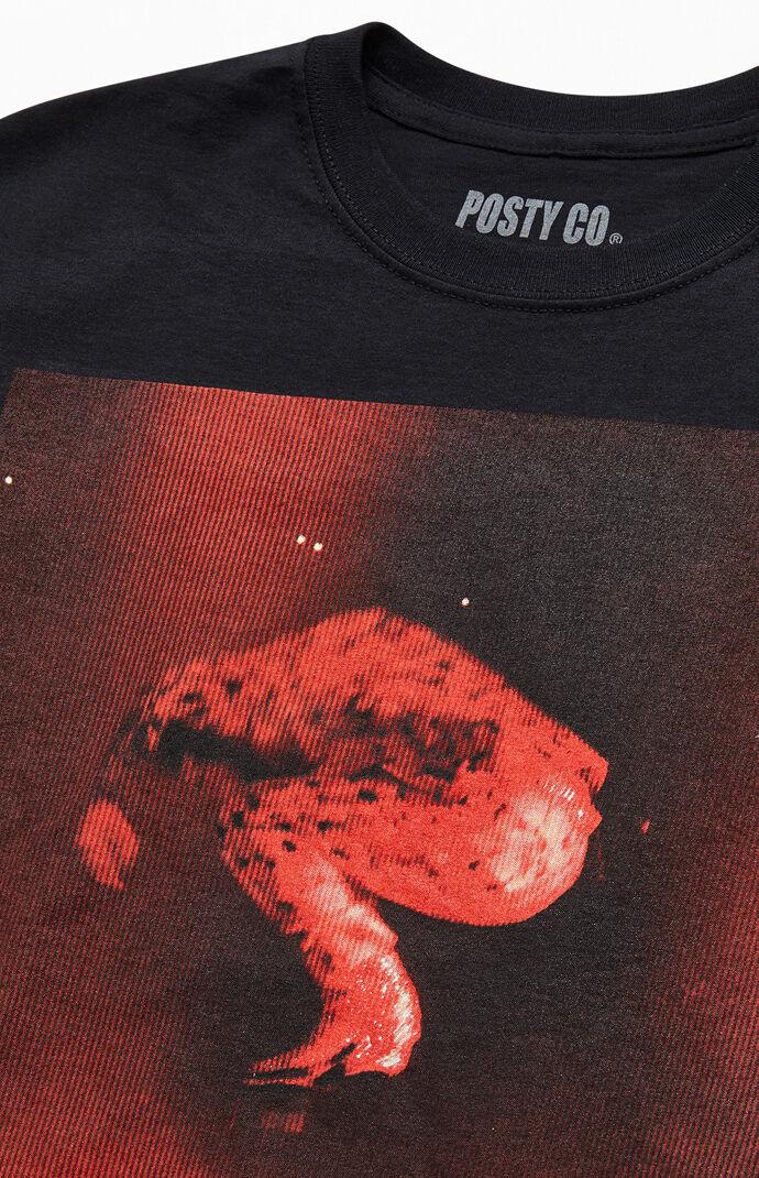 Post Malone Tour T-Shirt