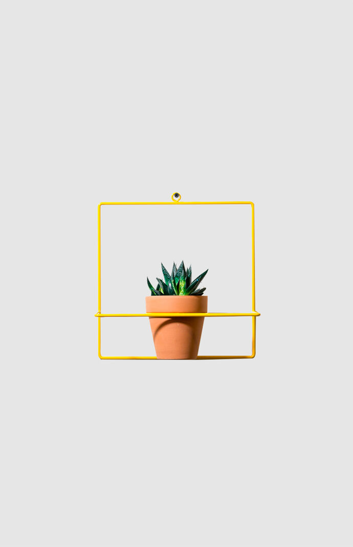Yellow Square Wall Planter