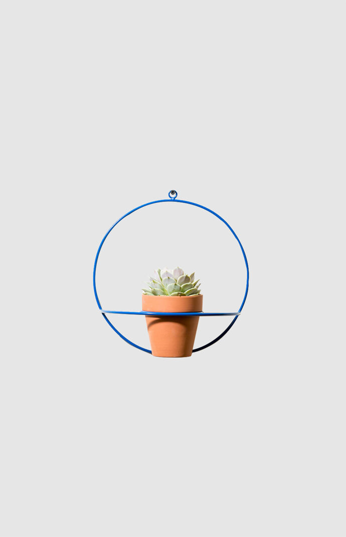Blue Circle Wall Planter