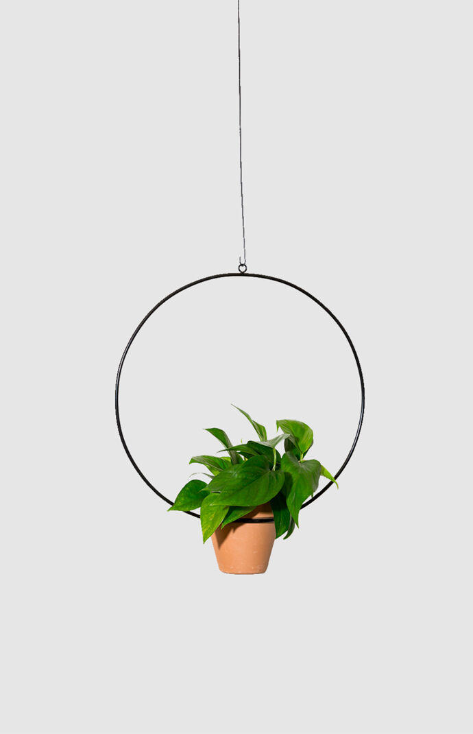 Black Hanging Circle Planter