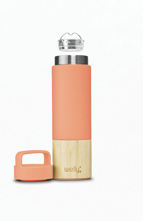 Traveler 18oz Bottle